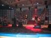 Amara 2006 - Recital - Directia 5.jpg